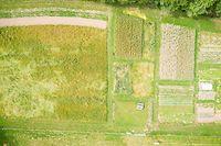Auf rund 2.000 Quadratmetern wird alles angebaut, was der Mensch in einem Jahr verzehrt.