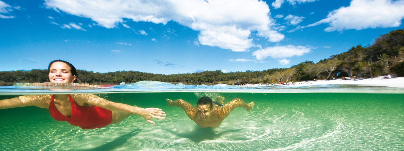 En attendant des jours meilleurs pour le tourisme de loisirs, les deux spécialistes du voyage unissent leurs forces.