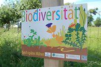 Betzdorf Biodiversität Artenvielfalt biodiversité