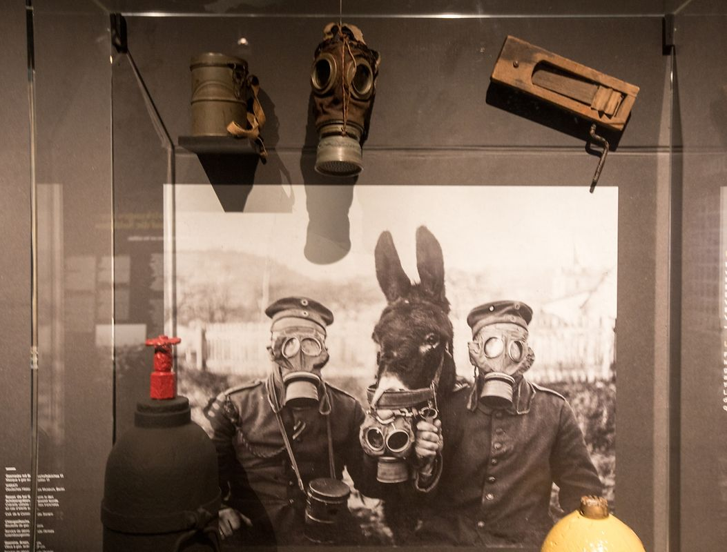 """Besuch der Ausstellung """"Lëtzebuerg an den Eischte Weltkrich""""."""