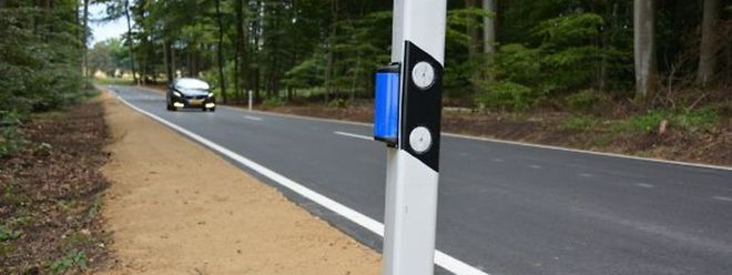 Ce petit boitier bleu va éloigner les animaux de la route
