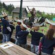 Eine der Hauptattraktionen des Gaalgebierg ist der Wildtierpark