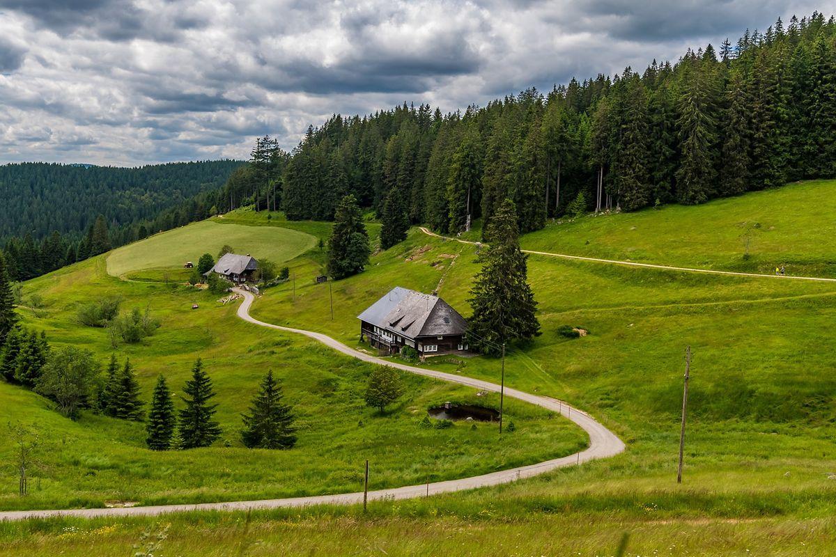 Blick ins Muchenland mit seinen uralten Schwarzwaldhöfen: Der Schluchtensteig führt immer wieder auch über Hochebenen und bietet dann schöne Aussichten.