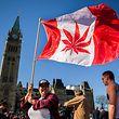 In Kanada werden Milliardenumsätze und somit hohe Steuereinnahmen durch Cannabis erwartet.