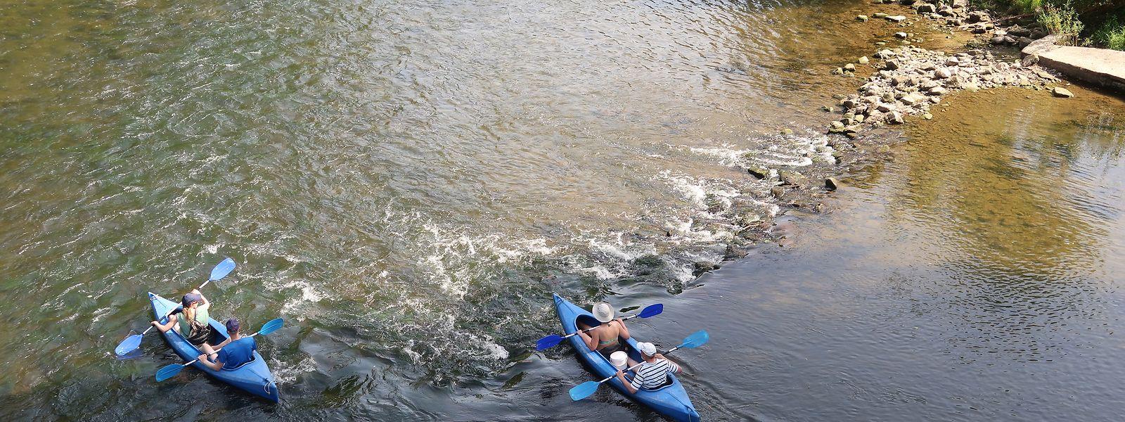 An sonnigen Tagen fahren unzählige Kanus die Sauer in Richtung Wasserbillig hinunter.