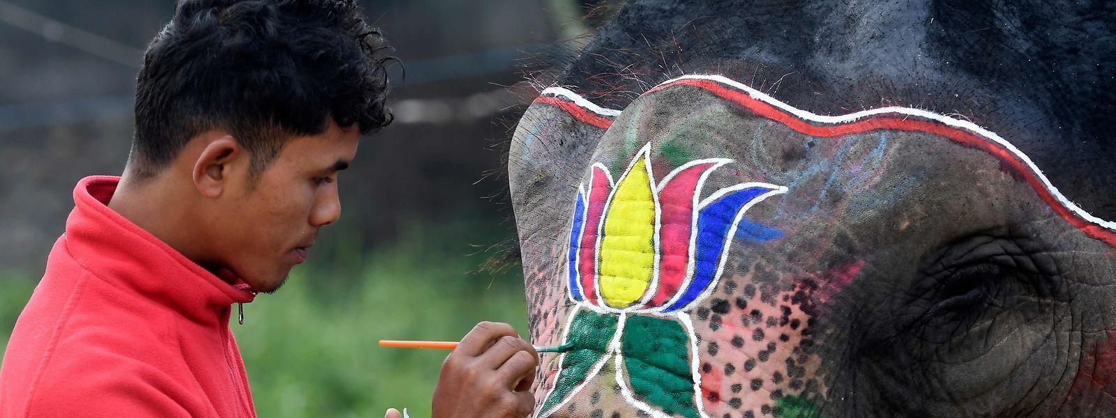 """Perfektes Make-up: Ein Mahut schmückt seinen Elefanten für den Festzug im Rahmen des """"Chitwan Elephant Festival""""."""