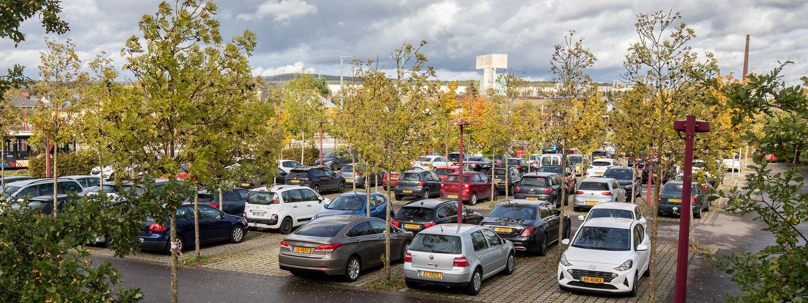 Stets gut besucht ist der Parkplatz bei der Zughaltestelle zwischen Niederkerschen und Sassenheim. Während der Umbauarbeiten werden sich die Nutzer aber nach einer Alternative umsehen müssen.