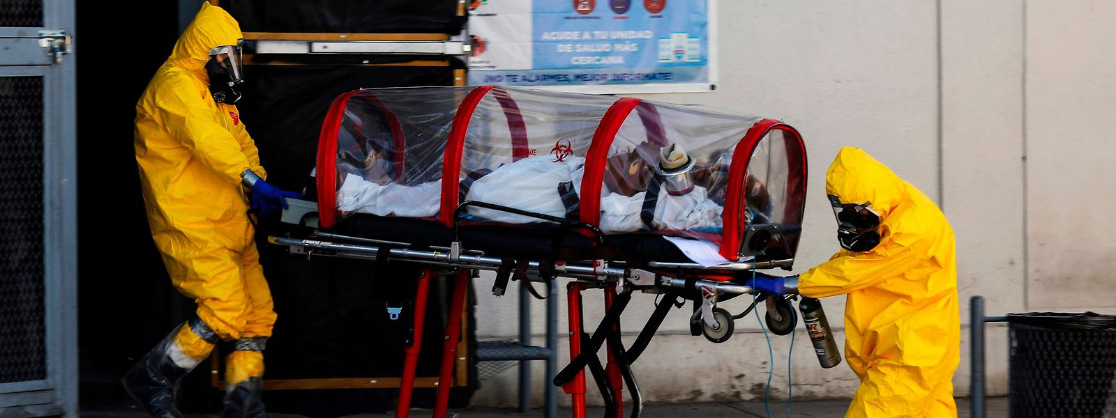 Le coronavirus pourrait devenir endémique, selon les experts de l'OMS