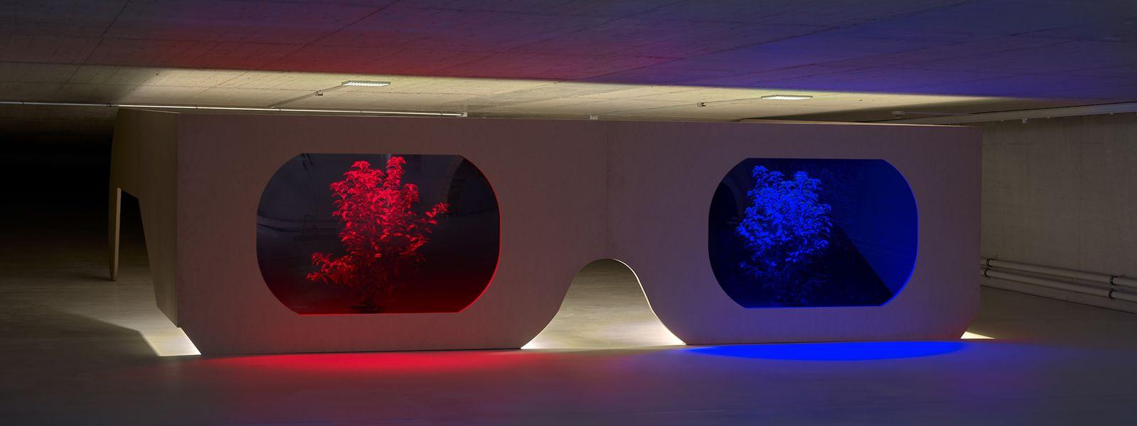 Für den Luxemburger Künstler liegt das eigentliche Kunstwerk in der ästethischen Erfahrung, die der Betrachter macht.