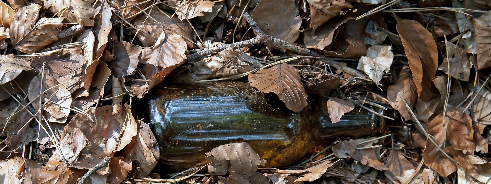 Wird Abfall nicht eingesammelt, überdauert er ewige Zeiten im Wald – eine Glasflasche zum Beispiel 4000 Jahre. Zudem können sich Tiere an Scherben oder verschluckten Plastikteilen Schaden zuziehen.