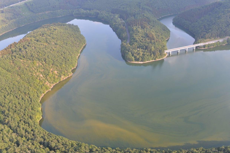 Le lac d'Esch-sur-Sûre vu du ciel, ce mercredi 25 juillet. Les ondulations verdâtres ne sont autres que les concentrations d'algues toxiques dans l'eau.