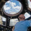 """ARCHIV - HANDOUT - 12.06.2014: Weltall: Der ESA-Astronaut Alexander Gerst blickt während seines Fluges mit der Internationalen Raumstation ISS durch ein Fenster in der Kuppel auf die Erde. (Zu dpa """"«Astro-Alex» Superstar - ISS-Commander mit besonderer Mission"""" vom 22.05.2018) Foto: Nasa/dpa - ACHTUNG: Nur zur redaktionellen Verwendung und nur mit vollständiger Nennung des vorstehenden Credits +++ dpa-Bildfunk +++"""