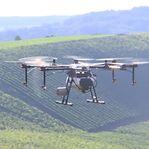 Drones já são usados para pulverizar vinhas no Luxemburgo