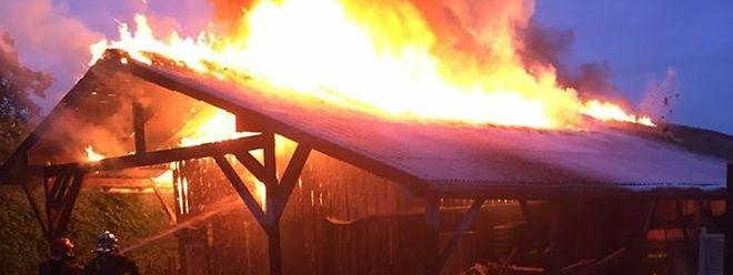 Beim Eintreffen der Feuerwehr stand die Halle lichterloh in Flammen.