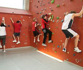 Mini-Koala Kletterkurs für Kinder von 5 – 7 Jahren