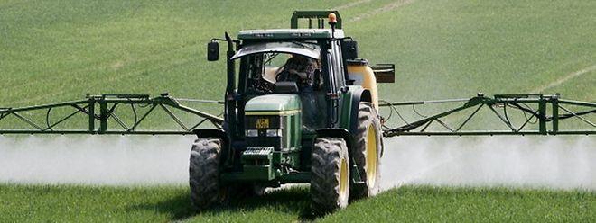 In Zukunft sollen weniger Pestizide zum Einsatz kommen.