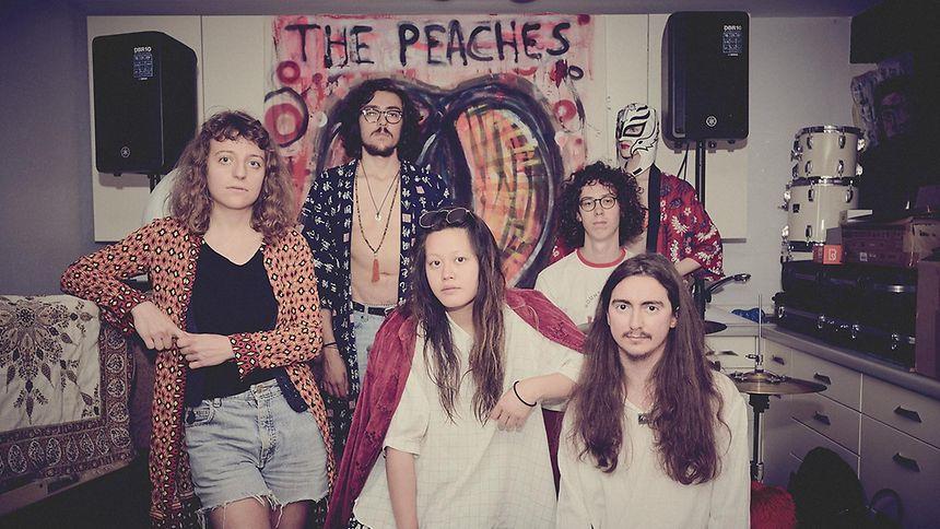 Ein Stil, ein Sound, eine Band: The Choppy Bumpy Peaches.