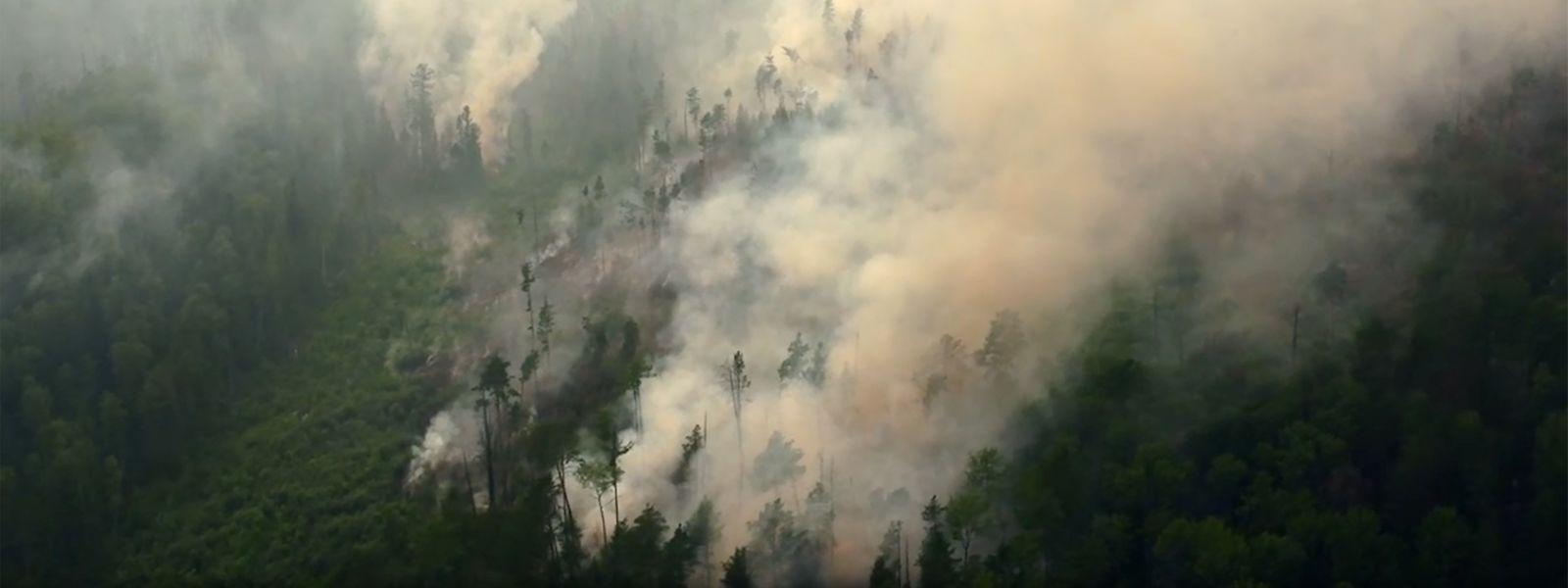 Ein Waldbrand in der Region Krasnojarsk. Im Kampf gegen die verheerenden Waldbrände in Sibirien hat das russische Militär Löschflugzeuge eingesetzt.