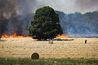 Das Feuer in Hamm breitete sich rasend schnell aus und griff auf ein anliegendes Waldstück über.