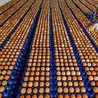 In 138 Geflügelbetrieben wurden noch Spuren von Fipronil in den Eiern nachgewiesen.