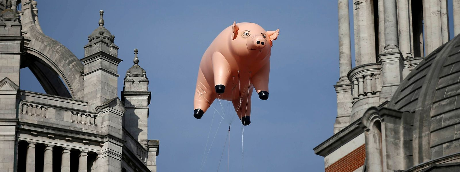 Le cochon gonflable de Pink Floyd.