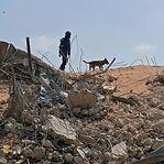 ONU apela a doações urgentes e pede investigação independente em Beirute