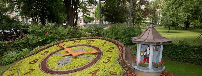 Bei der Differdinger Blumenuhr, verrät der Zwerg, was die Uhr geschlagen hat. Im Rathaus ist es der Wähler.