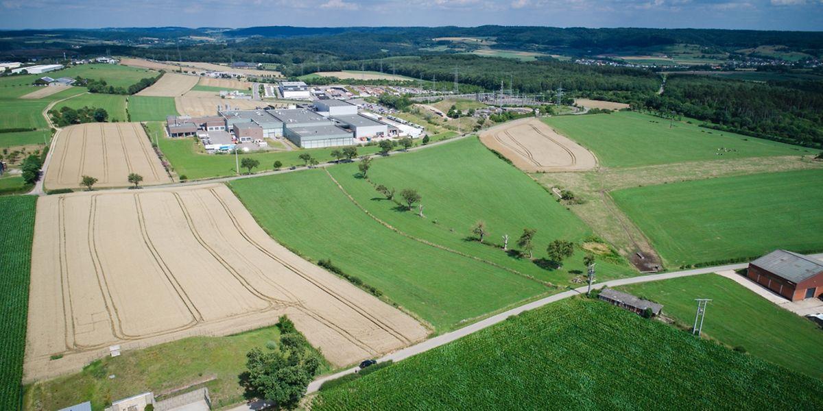 25 hectares ont été réunis à Bissen, mais il manque des signatures pour boucler la mise à disposition à Google.