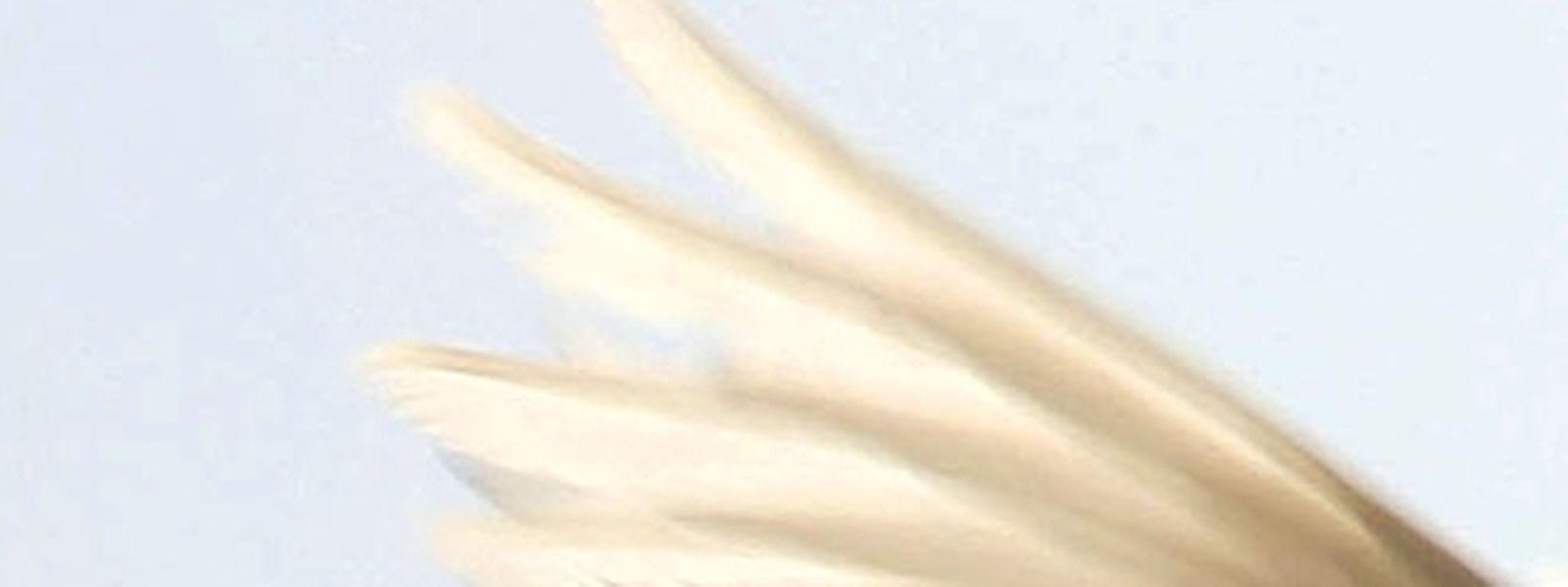 Gerade in stürmischen Zeiten ist es nicht einfach, den sanften Hauch des Heiligen Geistes wahrzunehmen.