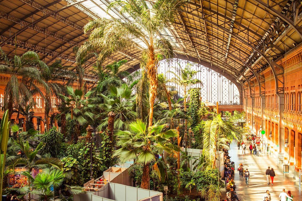 Tropical gardens inside Atocha railway station