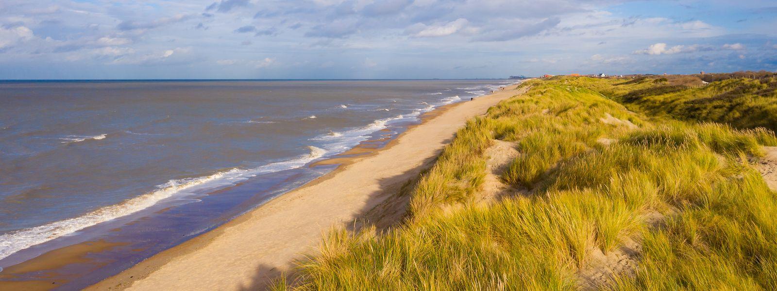 Encore «désertées»: les plages de Bredene, entre Ostende et De Haan.