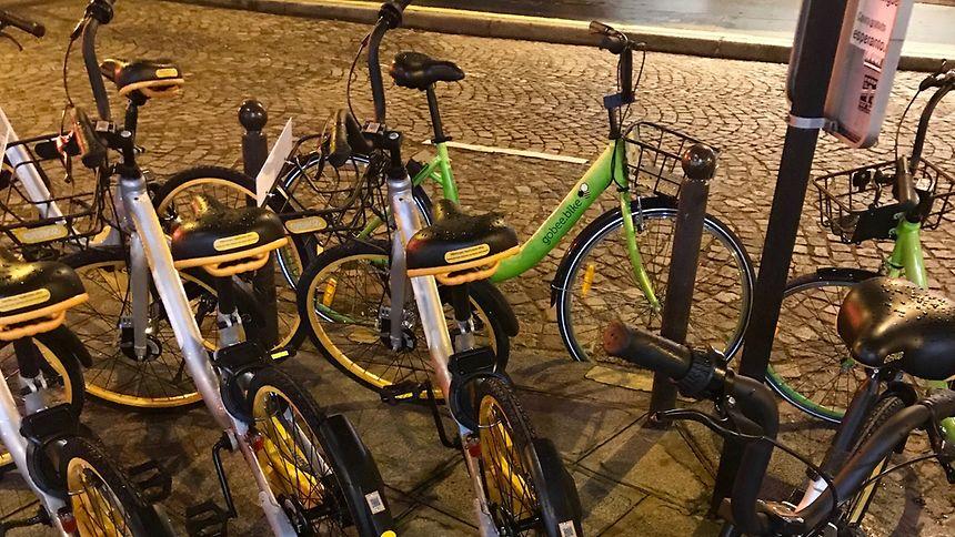 La mairie souhaite faire de Paris une ville cyclable dont 15% des déplacements sur le territoire parisien seront effectués à vélo.