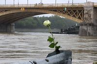 "A rose is displayed on the banks of the Danube river on May 30, 2019 in Budapest after the ""Mermaid"" sightseeing boat sank after colliding with a larger vessel in pouring rain. - Hungarian police launched a criminal investigation into one of the country's worst boat accidents that left at least seven South Korean tourists dead and 21 others missing. (Photo by FERENC ISZA / AFP)"