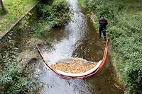 Carole Dieschbourg promet des contrôles renforcés en amont pour protéger la qualité des eaux de rivière.