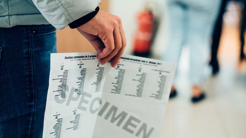 Wahlen im Rückspiegel.