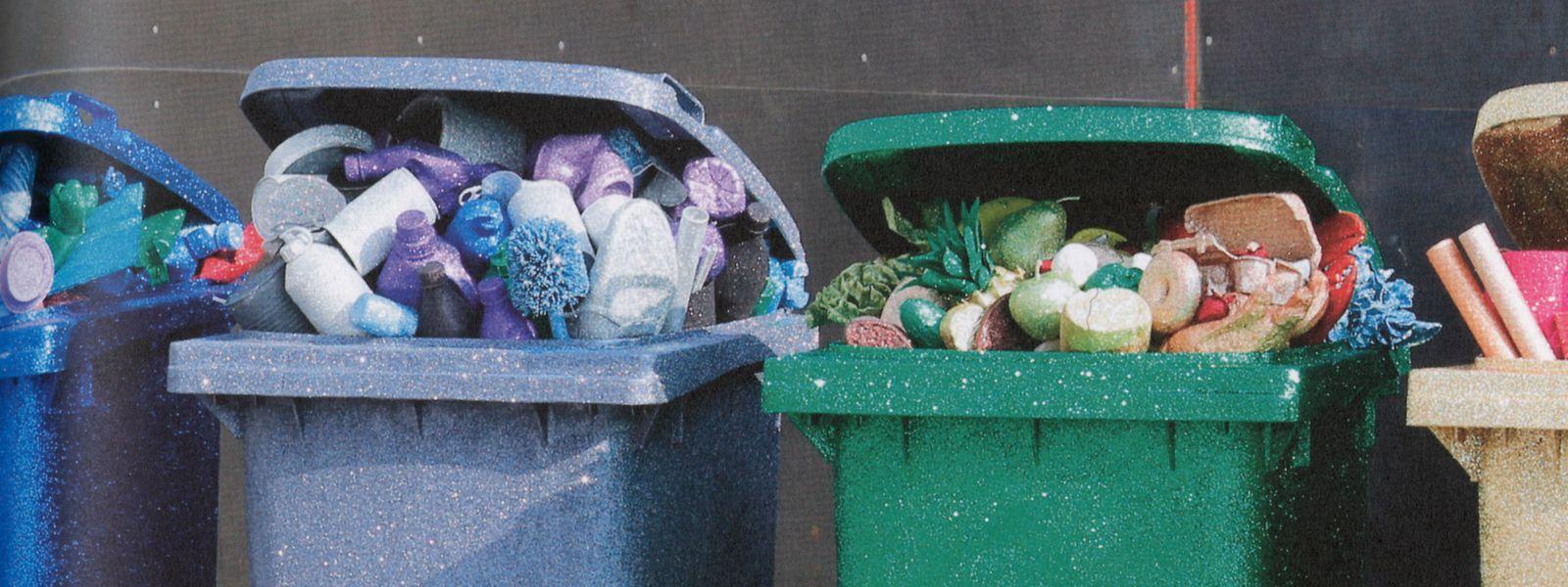 Chaque Luxembourgeois produit de l'ordre de 193 kg de déchets par an.