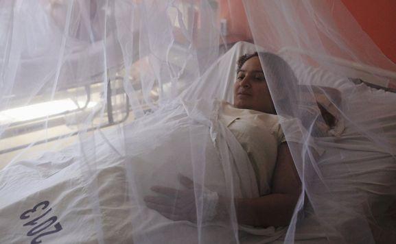 Où en est l'épidémie ? L'OMS décrète l'urgence sanitaire mondiale — Virus Zika