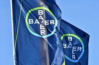 Da Bayer und Monsanto fast rund um den Globus Geschäfte machen, mussten Genehmigungen in rund 30 Ländern eingeholt werden.