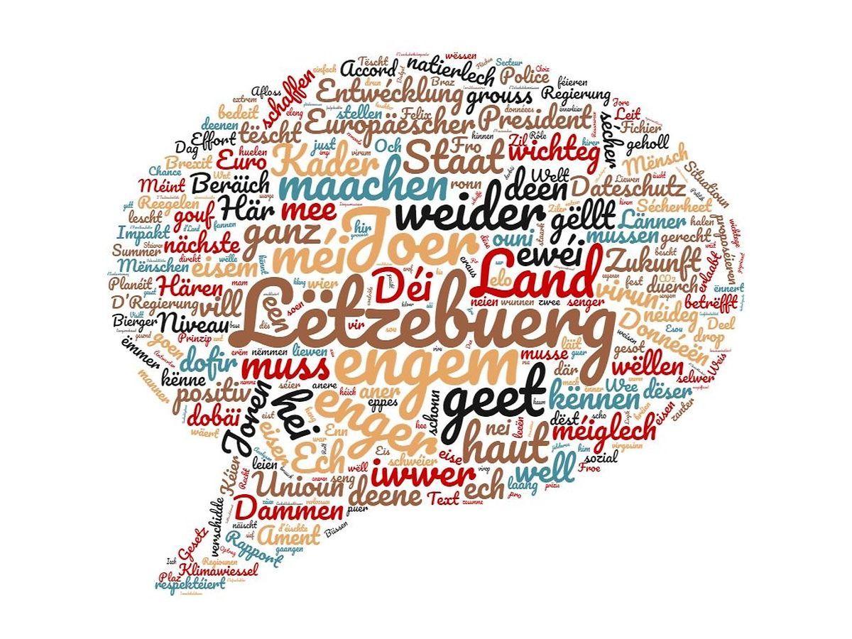 Xavier Bettels Rede in der Wortwolke. Die größer dargestellten Begriffe wurden am häufigsten verwendet.