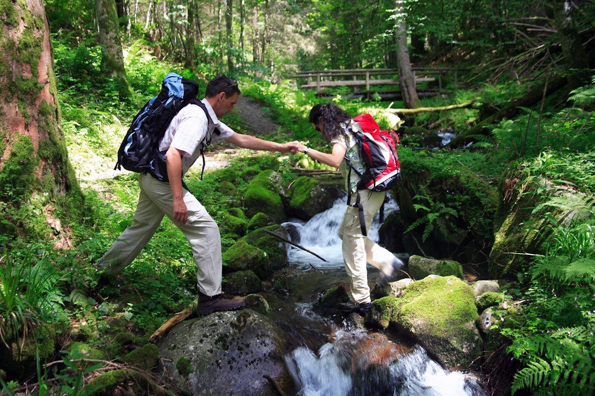 Wald, Wiesen und Wasser: Der Schluchtensteig führt durch felsige Flusstäler, über schmale Stege und Bäche, durchquert aber auch weite, malerische Wiesenlandschaften.