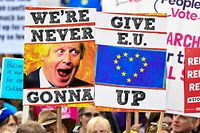 "Demonstrators hold placards and EU and Union flags as they take part in a march by the People's Vote organisation in central London on October 19, 2019, calling for a final say in a second referendum on Brexit. - Thousands of people march to parliament calling for a ""People's Vote"", with an option to reverse Brexit as MPs hold a debate on Prime Minister Boris Johnson's Brexit deal. (Photo by Niklas HALLE'N / AFP)"