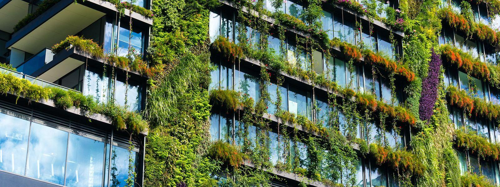 Eine vorbildliche Integration von Pflanzen in ein Gebäude zeigt dieses Hochhaus in Sydney.
