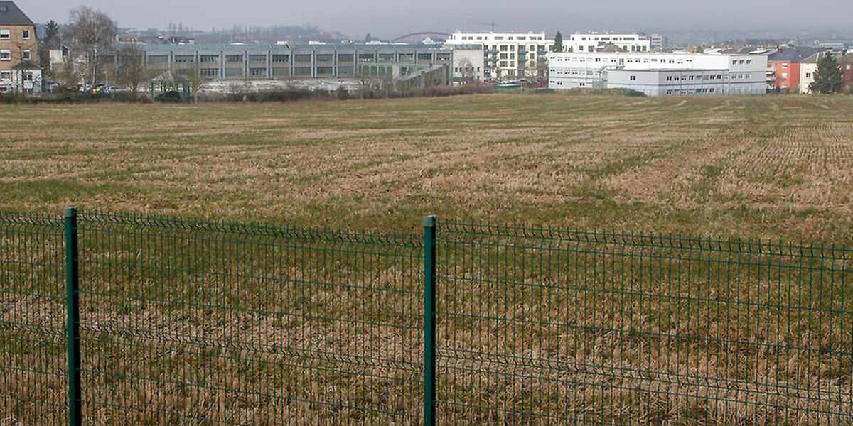 La construction se fera dans un champ à l'arrière des bâtiments existants
