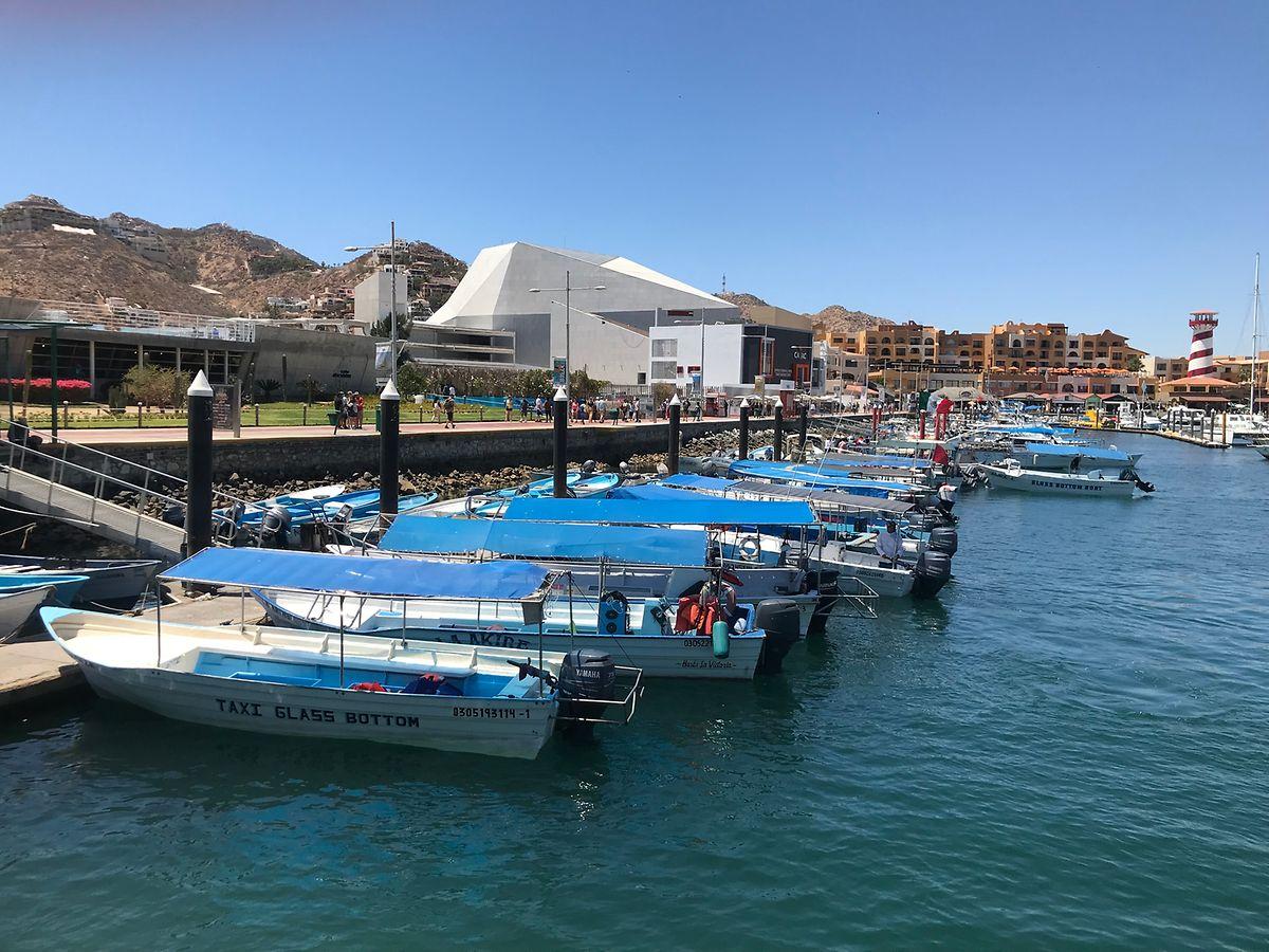 Beliebtes Reiseziel unter US-Touristen: die mexikanische Hafenstadt Cabo San Lucas.