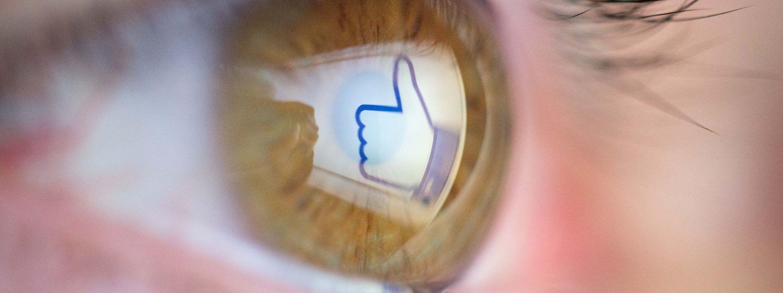 """«Les entreprises qui intègrent ce bouton """"J'aime"""" sur leur site web ne peuvent plus se cacher derrière Facebook. Elles aussi sont responsables des données»."""