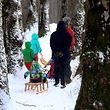 Vielerorts packten die Menschen die Gelegenheit beim Schopf und machten einen idyllischen Winterspaziergang.