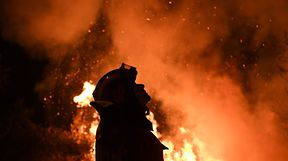 Conselho de Ministros extraordinários quer discutir e aprovar medidas de prevenção a incêndios