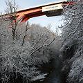 Illustration, Schnee, Winter, Winterlandschaft, Foto: Anouk Antony/Luxemburger Wort