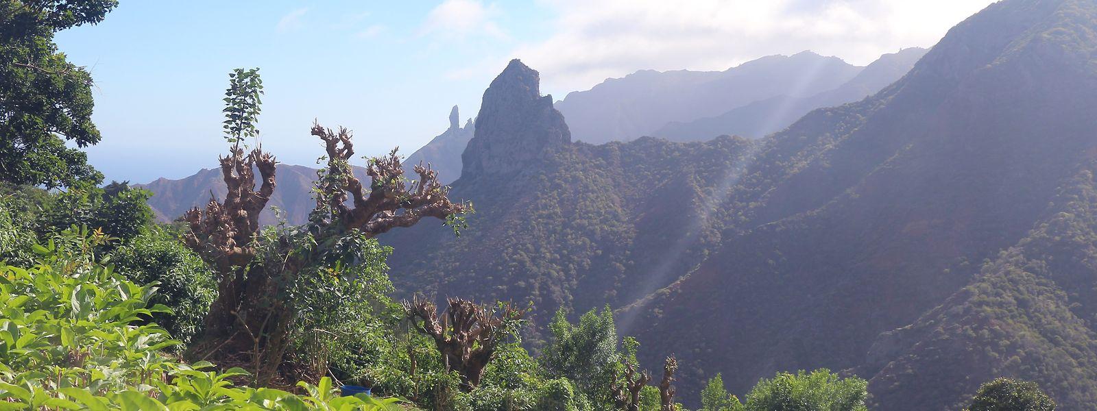 Es geht auch grün: Felsformation Lot im Süden der Insel Saint Helena.