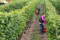 Visite du vignoble mosellan- vendanges 2016 - avec ministre Fernand Etgen / Foto: Charlot KUHN
